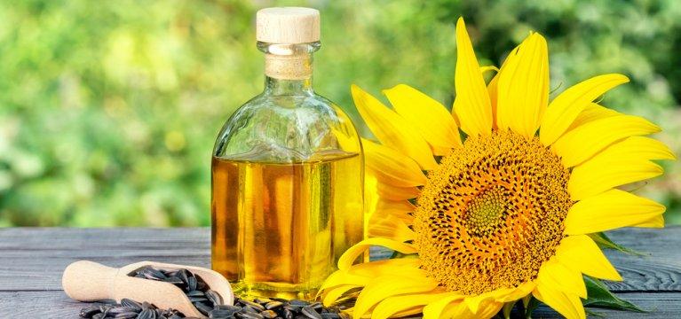 Manfaat Natural Oils dalam Perawatan Dove Shampoo untuk Rambut Kering