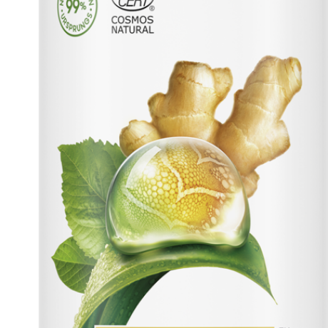 Dove Powered by Plants Body Lotion Ginger 250ml